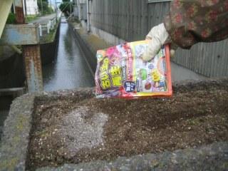 歩道橋花壇の土作り 7月12日