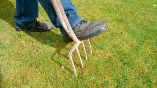 肥料に雑草の種が入っている?