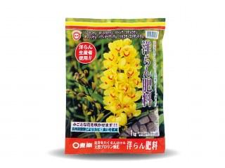 きれいなシンビジウムが咲きます