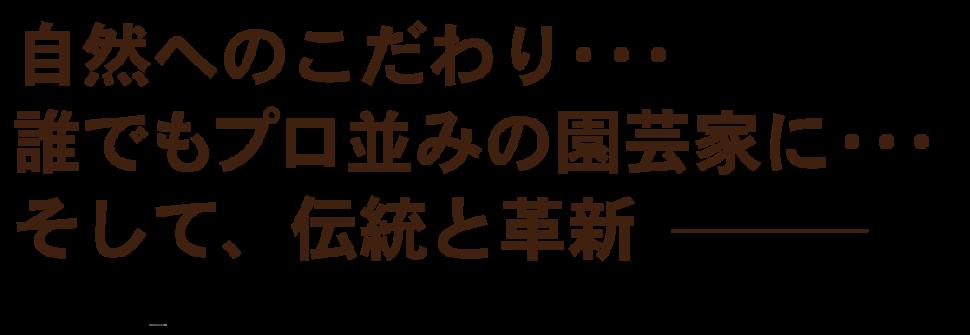 shachou-02-01