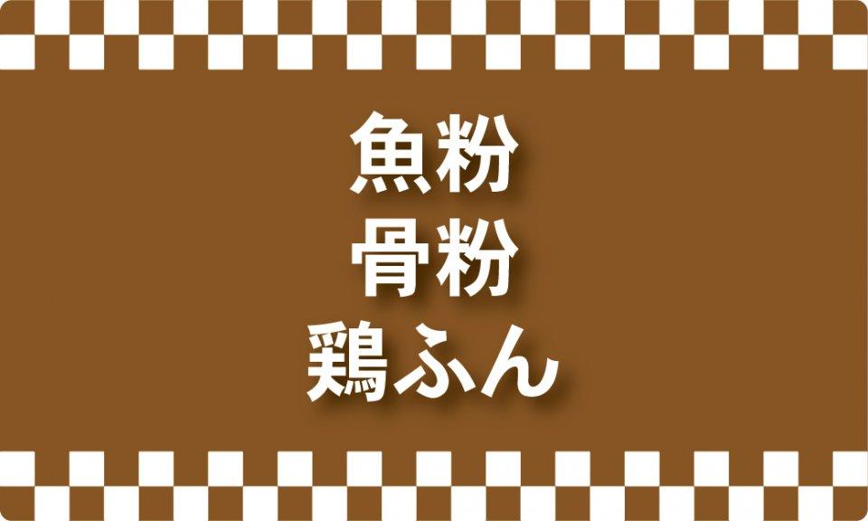 a02_015kate_gyohun