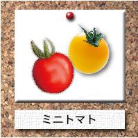 野菜-ミニトマト