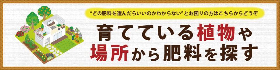 top_basyo_banner