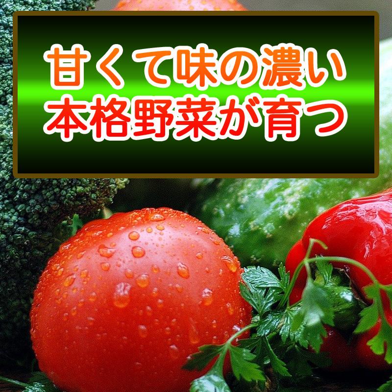 有機入り培養土 説明①N